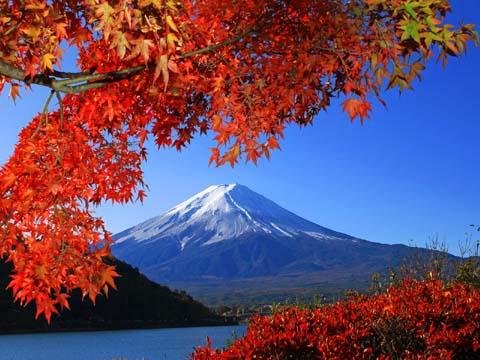 富士山と紅葉2